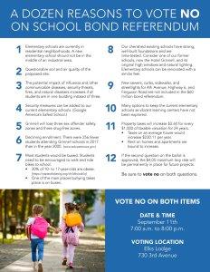 vote no flyer